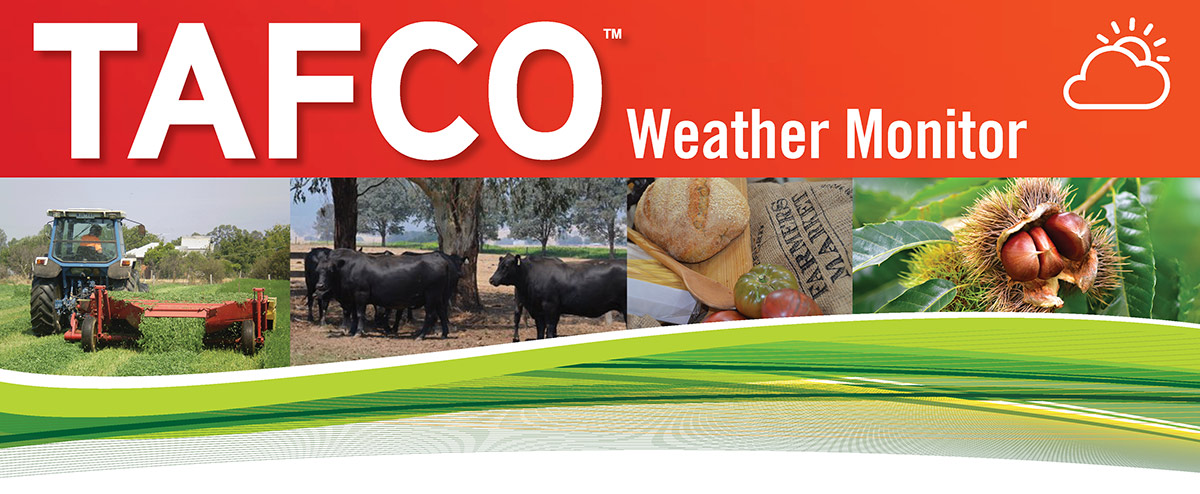 TAFCO Weather Monitor